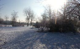 Sonne, Schnee, Discgolf-Scheiben