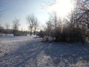 Sonne, Schnee, Discgolf-Scheibe